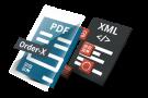 Order-X standard XML embedded into PDF
